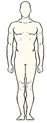 Example screenshot showing the anterior view of the simple body area diagram
