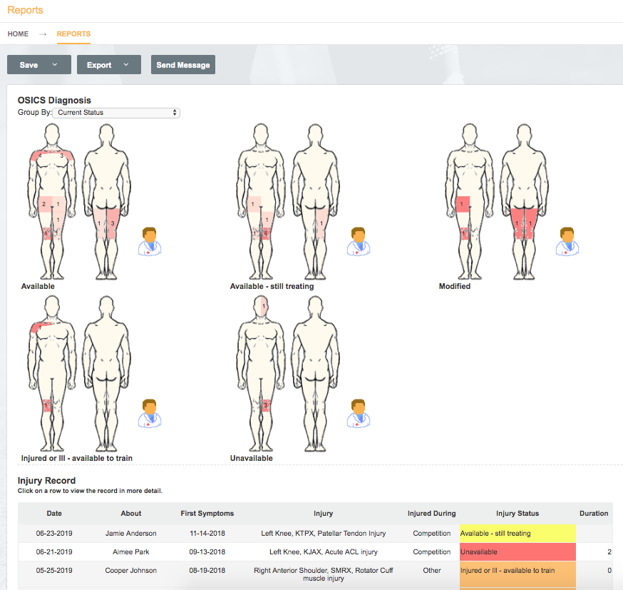 An example screenshot showing how injuries can be grouped and visualised